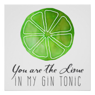 you_are_the_lime_in_my_gin_tonic_poster-r9511a46b509c489c9968b9180b629749_w2q_8byvr_324