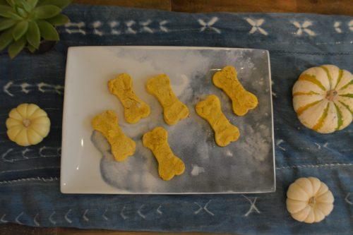 Doggie biscuit heaven